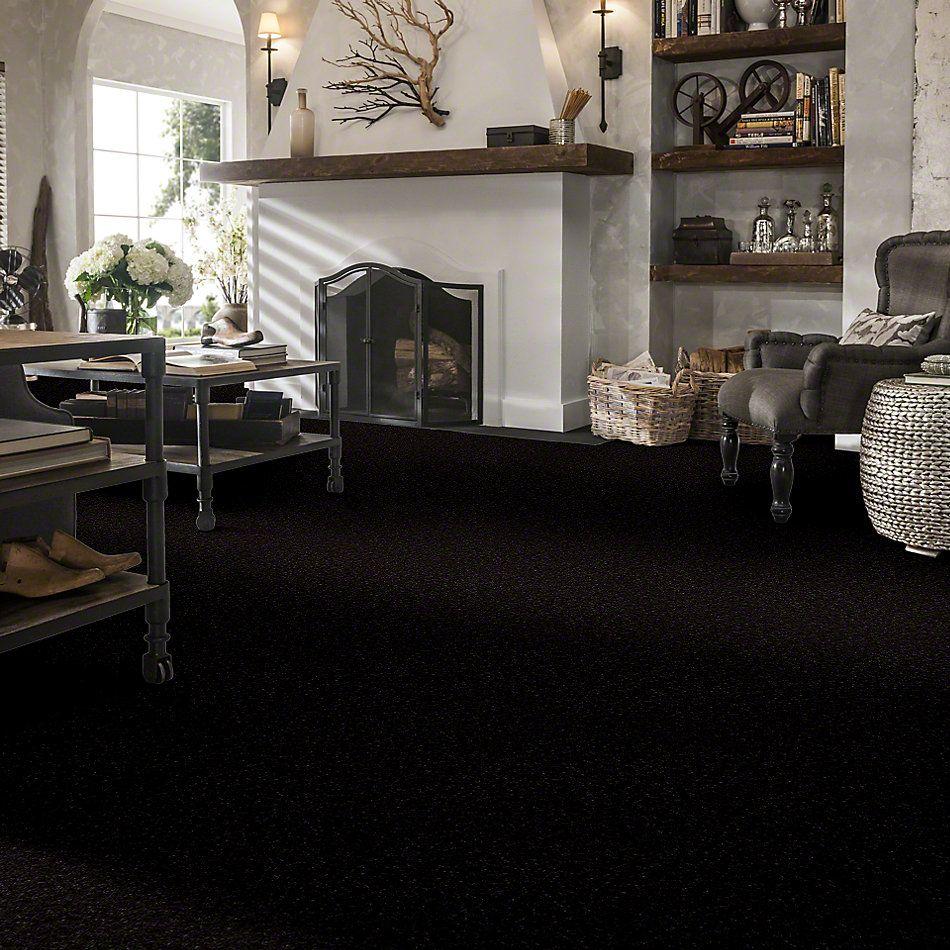 Shaw Floors Sprinter Black Beauty 00502_E0577