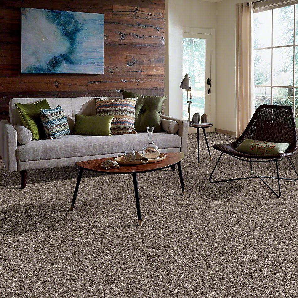 Shaw Floors Value Collections Go Big Net Trade Wind 00502_E0718