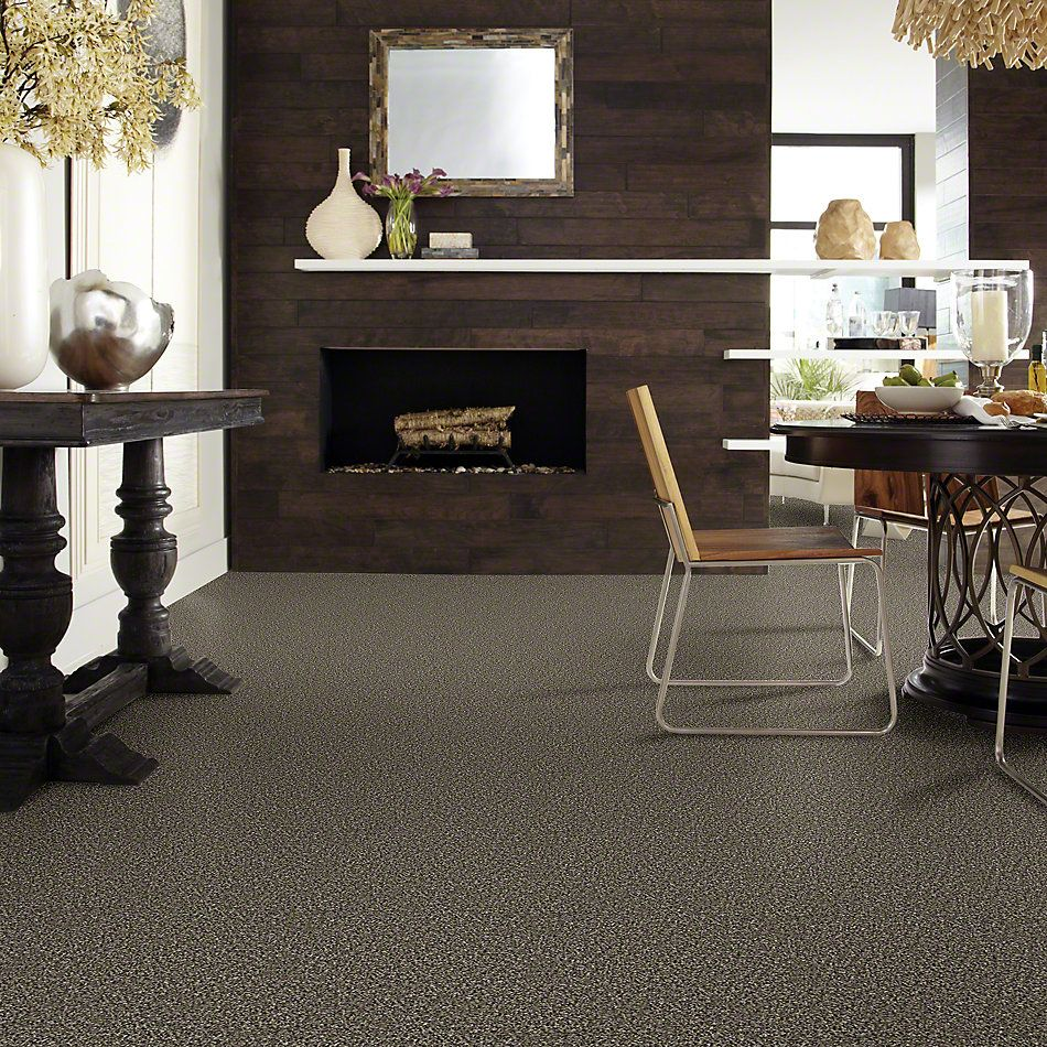 Shaw Floors Simply The Best Frosting Fossil 00502_E9350