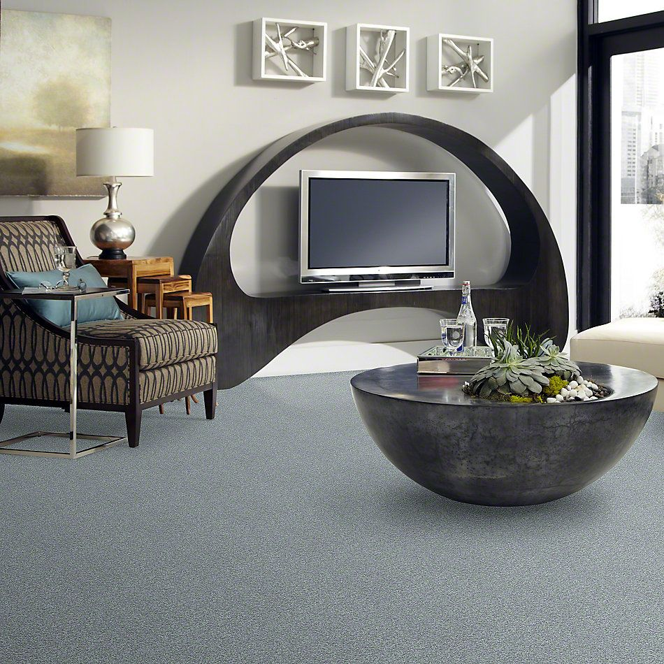 Shaw Floors Simply The Best Wild Extract Chrome 00502_E9351