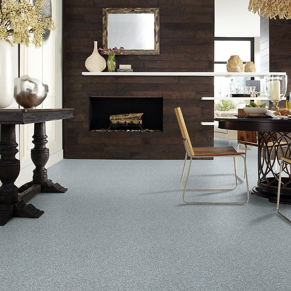 Shaw Floors Value Collections Wild Extract Net Chrome 00502_E9461