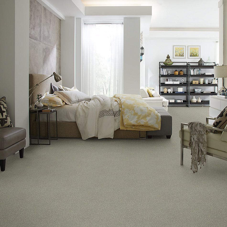 Shaw Floors Bellera Basic Rules Net Flax 00502_E9782