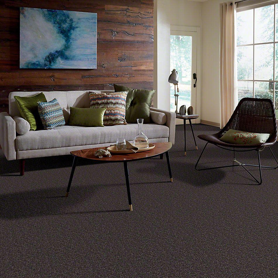 Shaw Floors Shaw Flooring Gallery Invite Possibility III Ship Yard 00502_Q316G