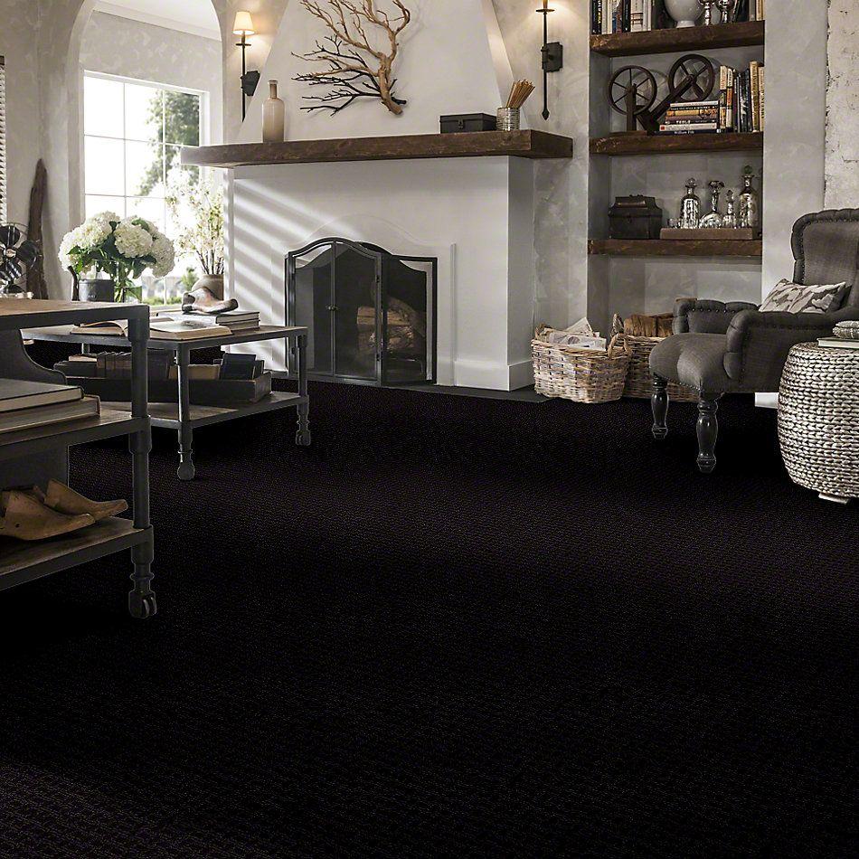 Shaw Floors Roll Special Xv284 Raven 00502_XV284