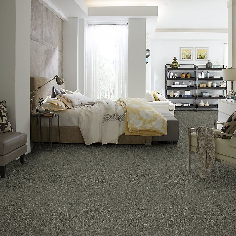 Anderson Tuftex American Home Fashions Lexi Cloudy Day 00502_ZA944