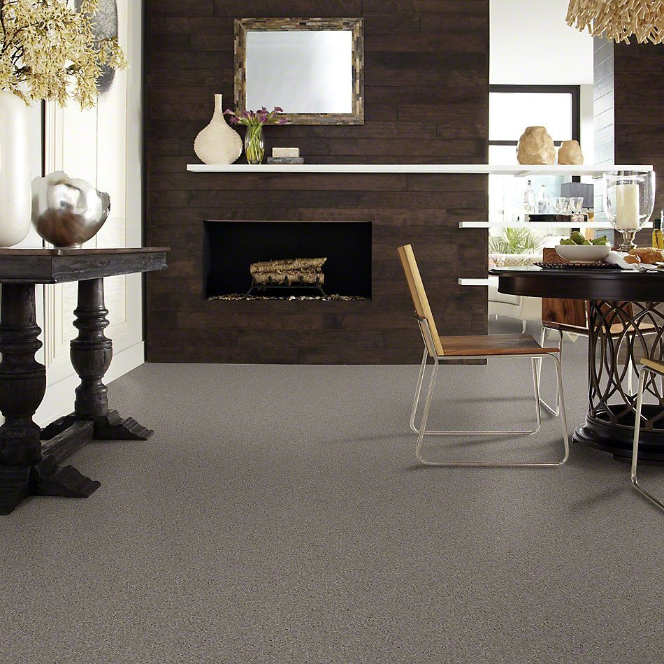Shaw Floors Shaw Design Center Beautifully Simple II 15′ Thunder 00503_5C752