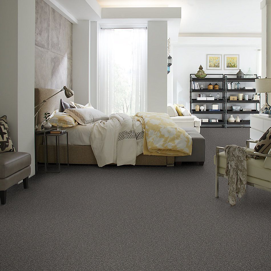 Shaw Floors Simply The Best Without Limits I Granite 00503_5E482
