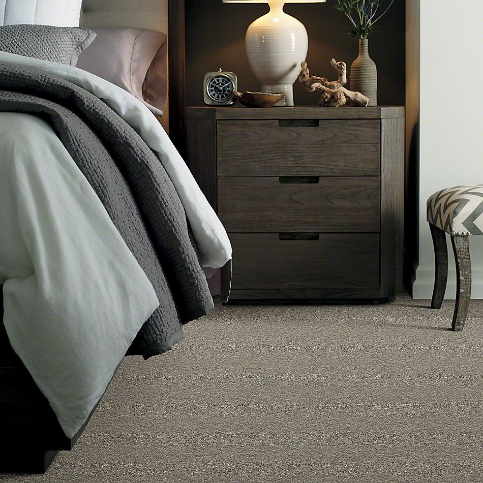 Shaw Floors Clearly Chic Bright Idea II Grey Flannel 00503_E0505