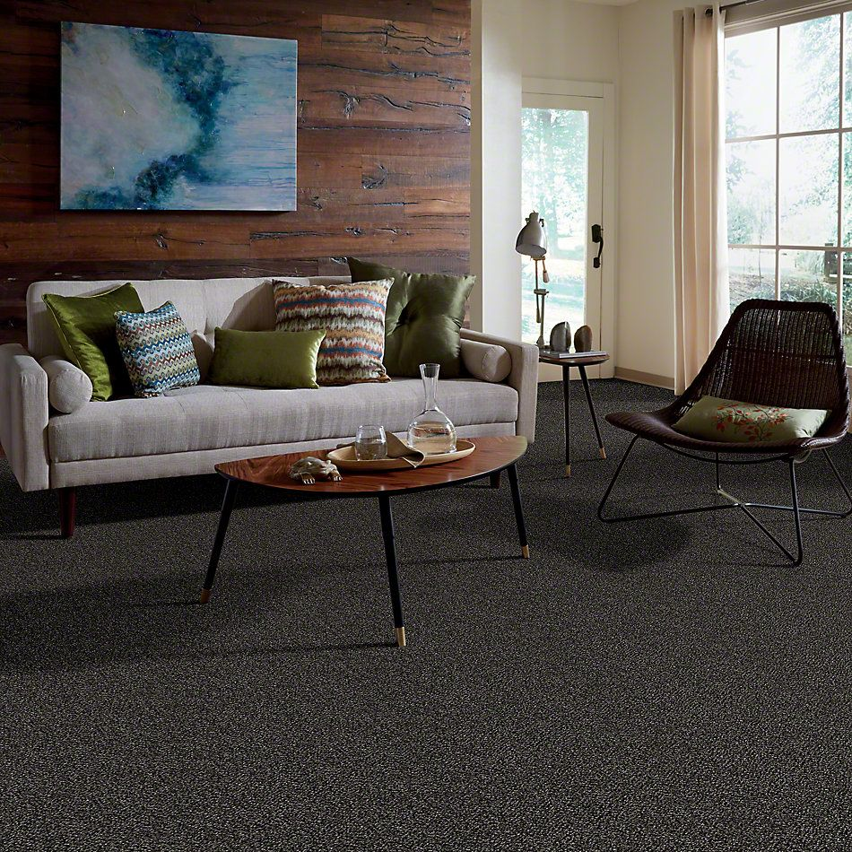 Shaw Floors Simply The Best Breaking Rules III Iron Age NA445_00503