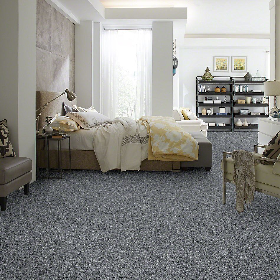 Shaw Floors Simply The Best Wild Extract Ironstone 00503_E9351