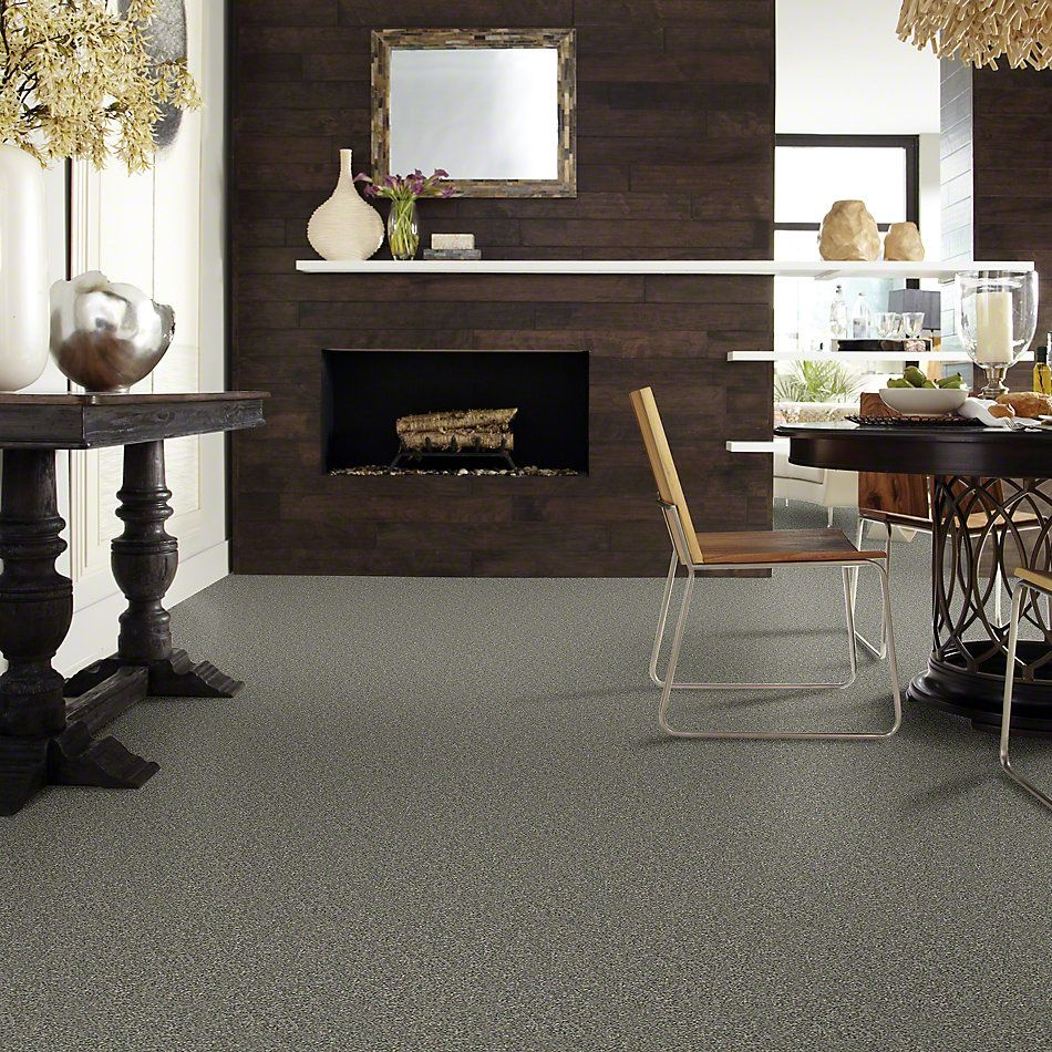 Shaw Floors Perfect Choice Fog GF00503_E9643