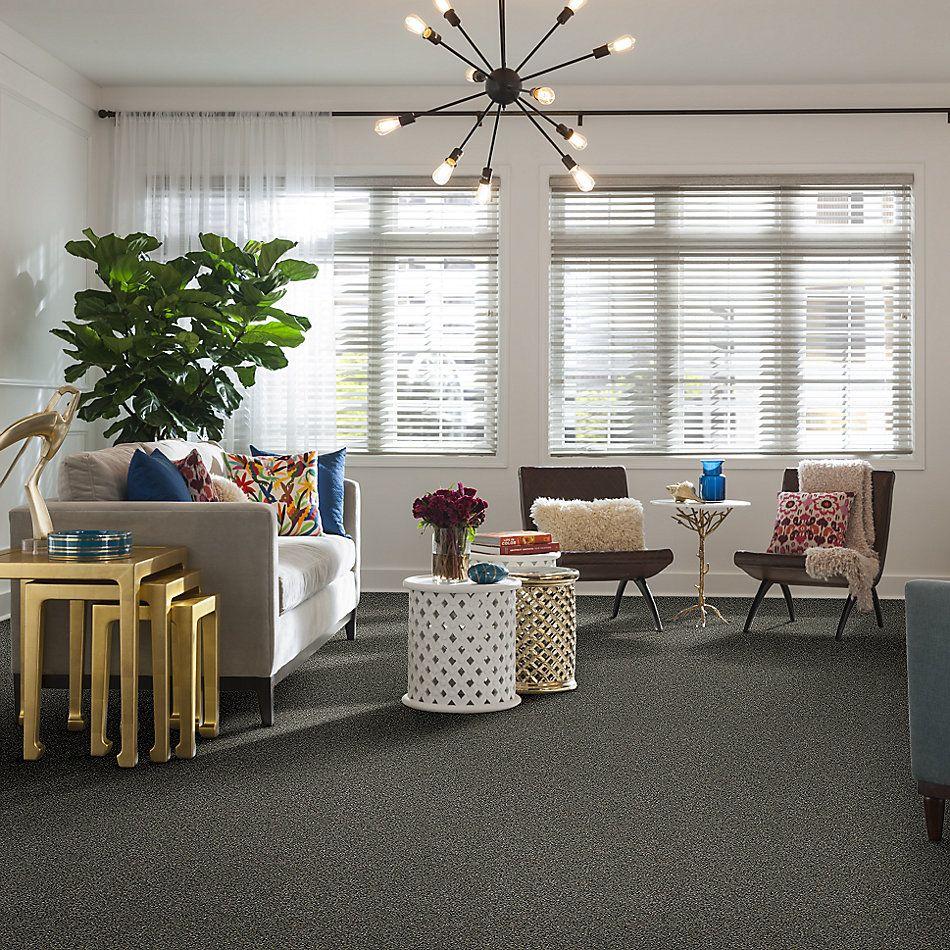 Shaw Floors Bellera Points Of Color I Net Fog 00503_E9785