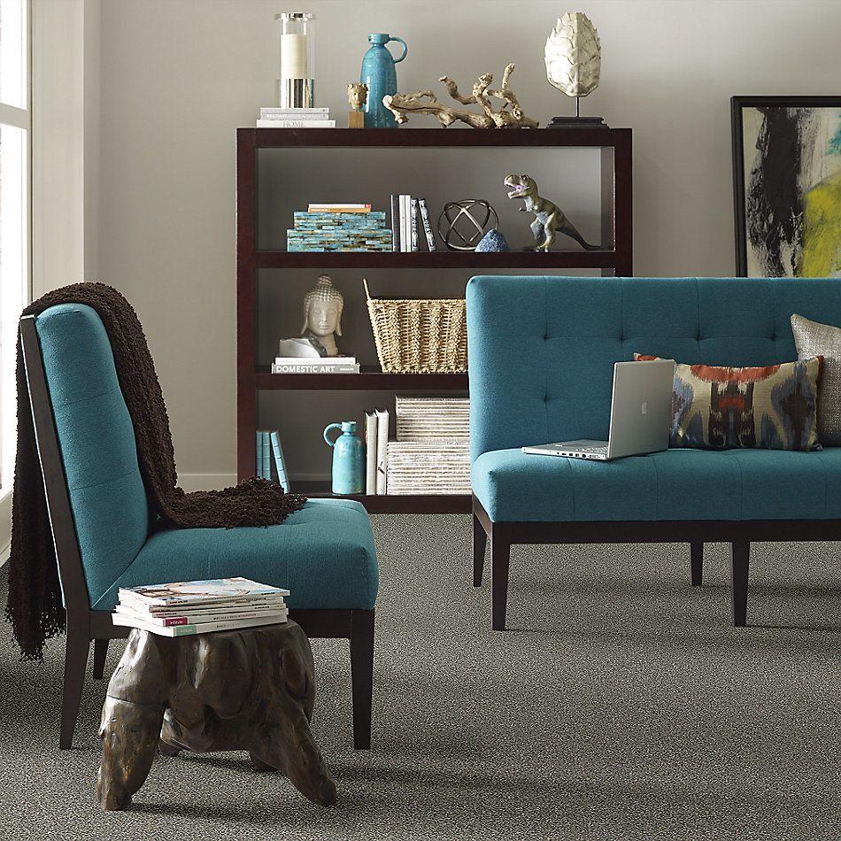 Shaw Floors Bellera Points Of Color II Net Fog 00503_E9786