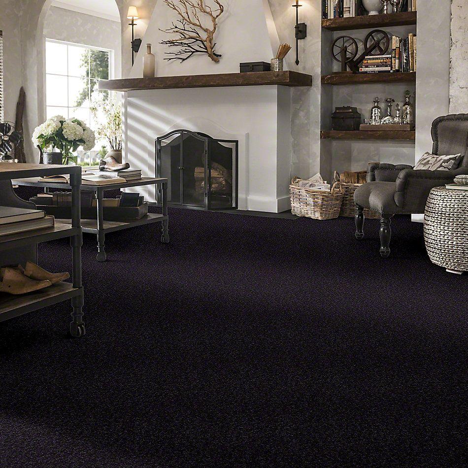 Shaw Floors Shaw Design Center Sweet Valley I 12′ Graphite 00503_QC420