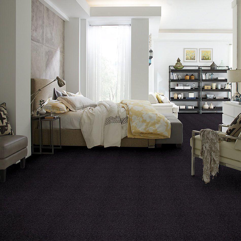 Shaw Floors Shaw Design Center Park Manor 12′ Graphite 00503_QC459