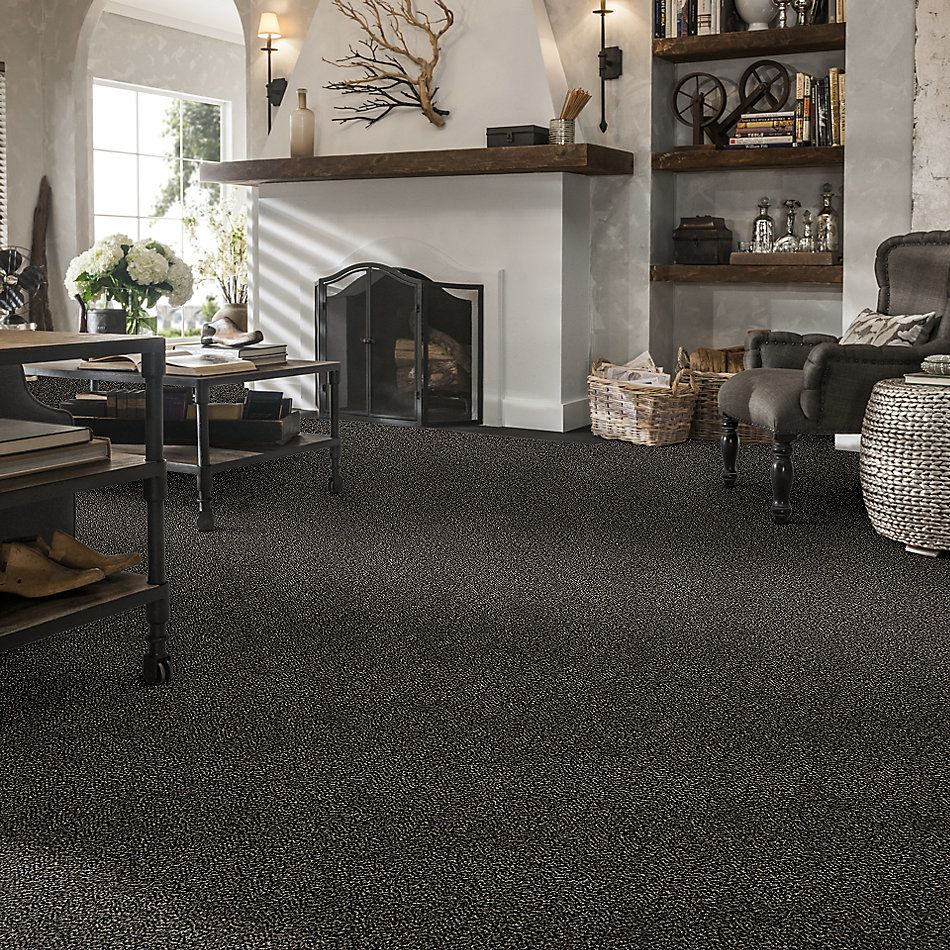 Shaw Floors Roll Special Xy176 Black Granite 00503_XY176
