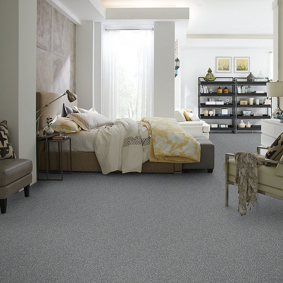 Shaw Floors Value Collections Within Reach I Net Grey Fox 00504_5E335