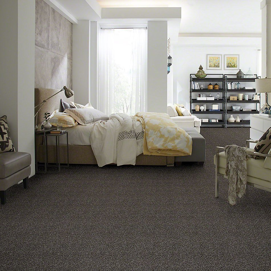 Shaw Floors Value Collections Of Course We Can III 12′ Net Boulder 00504_E9441