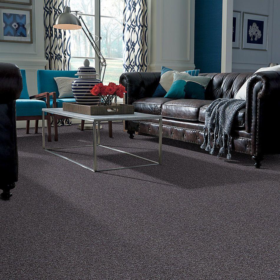 Shaw Floors Roll Special Xv811 Storm 00504_XV811
