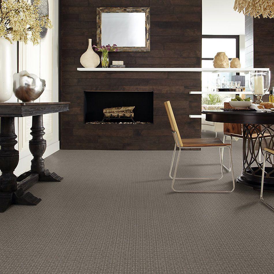 Shaw Floors Simply The Best Vastly Net Iced Mocha 00505_5E348