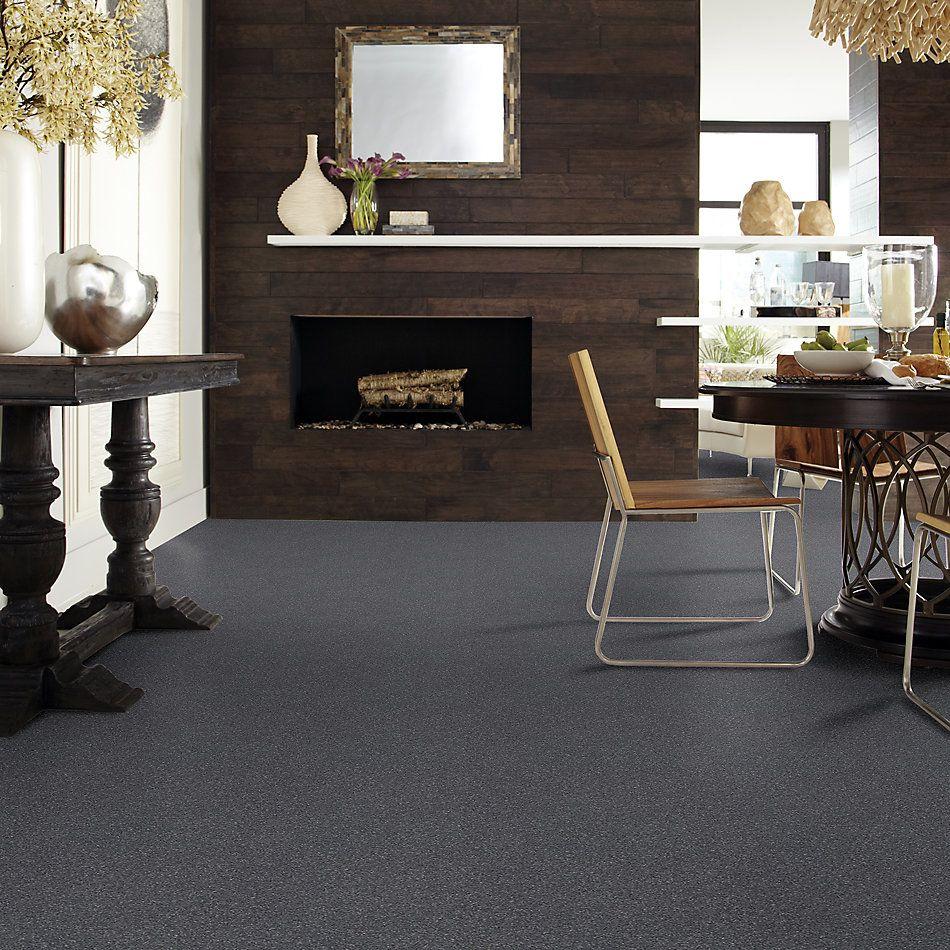 Shaw Floors Bellera Basic Rules Net Steel 00505_E9782