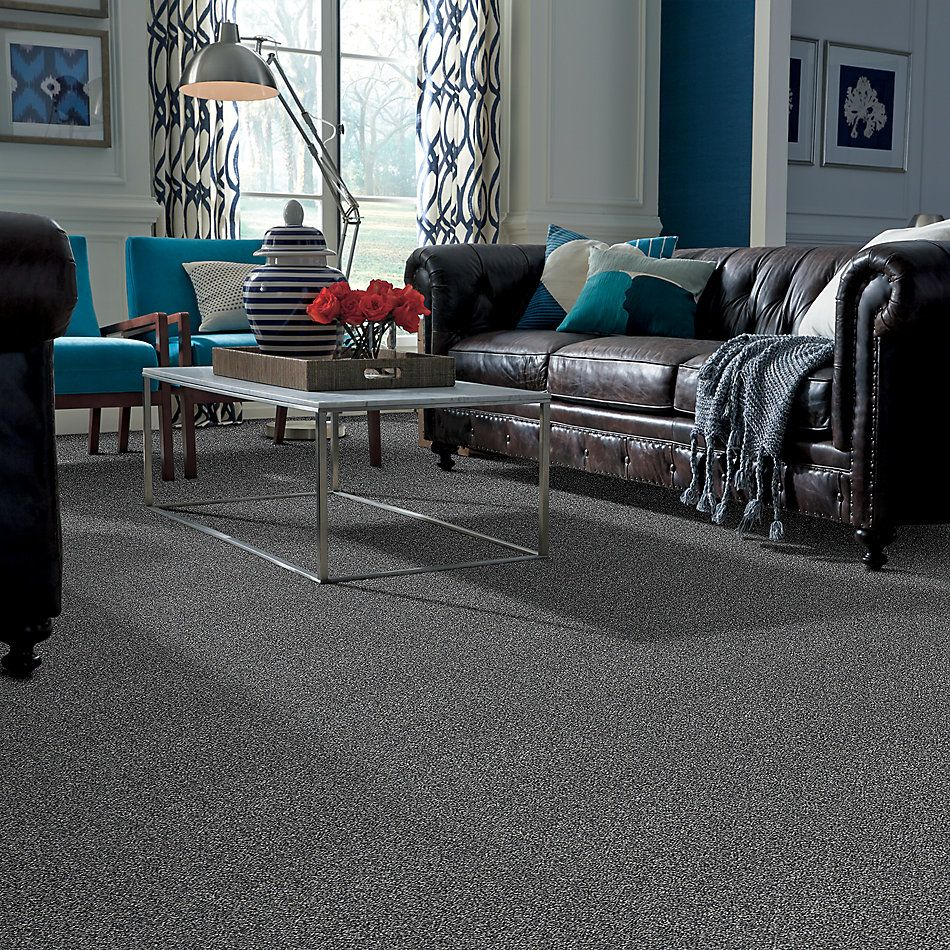 Shaw Floors Bellera Perpetual I Net Steel 00505_E9787