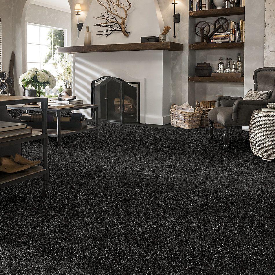 Shaw Floors Bellera Points Of Color II Net Truffle 00506_E9786