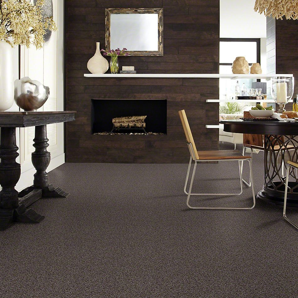Shaw Floors Caress By Shaw Subtle Flair Black Sheep 00508_CCS67
