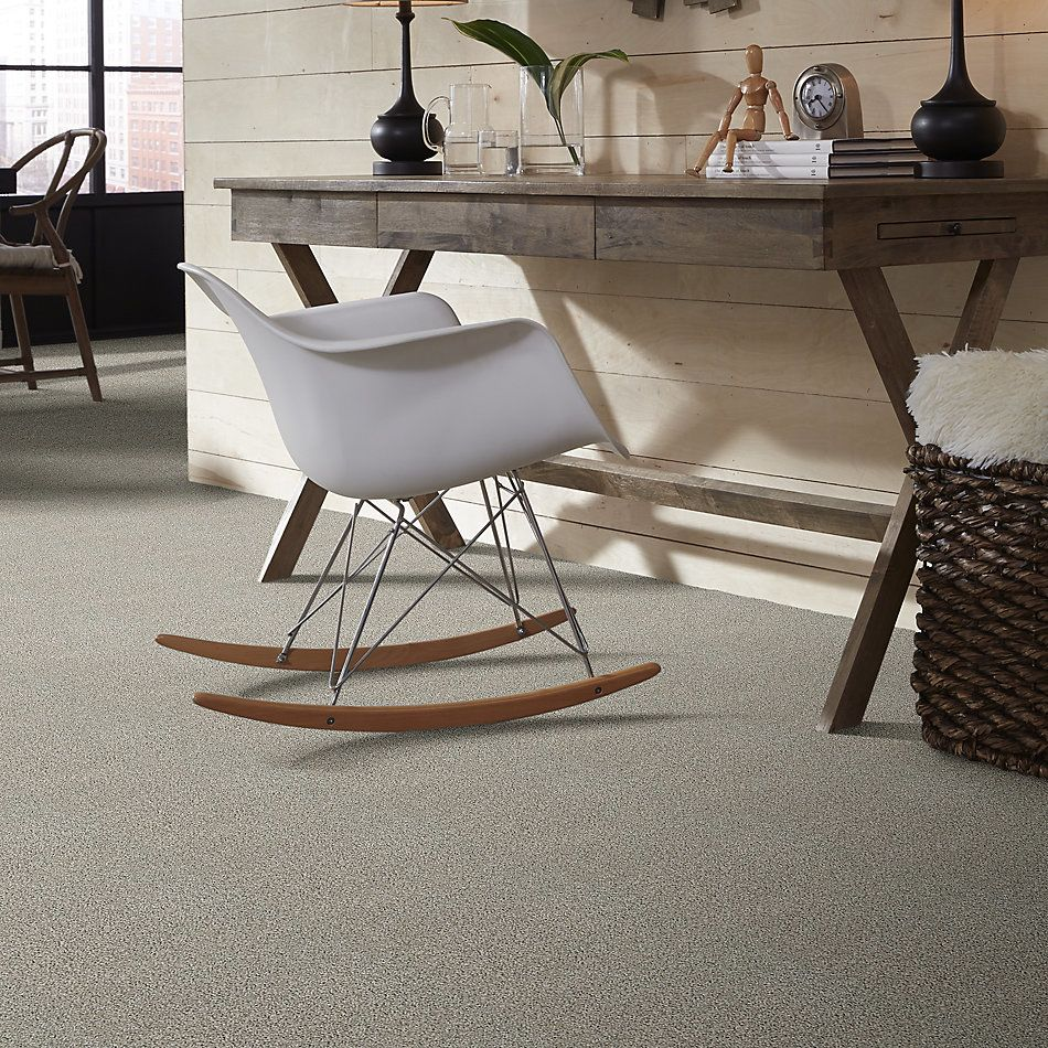 Shaw Floors Value Collections Poised Net Winter Birch 00510_5E102