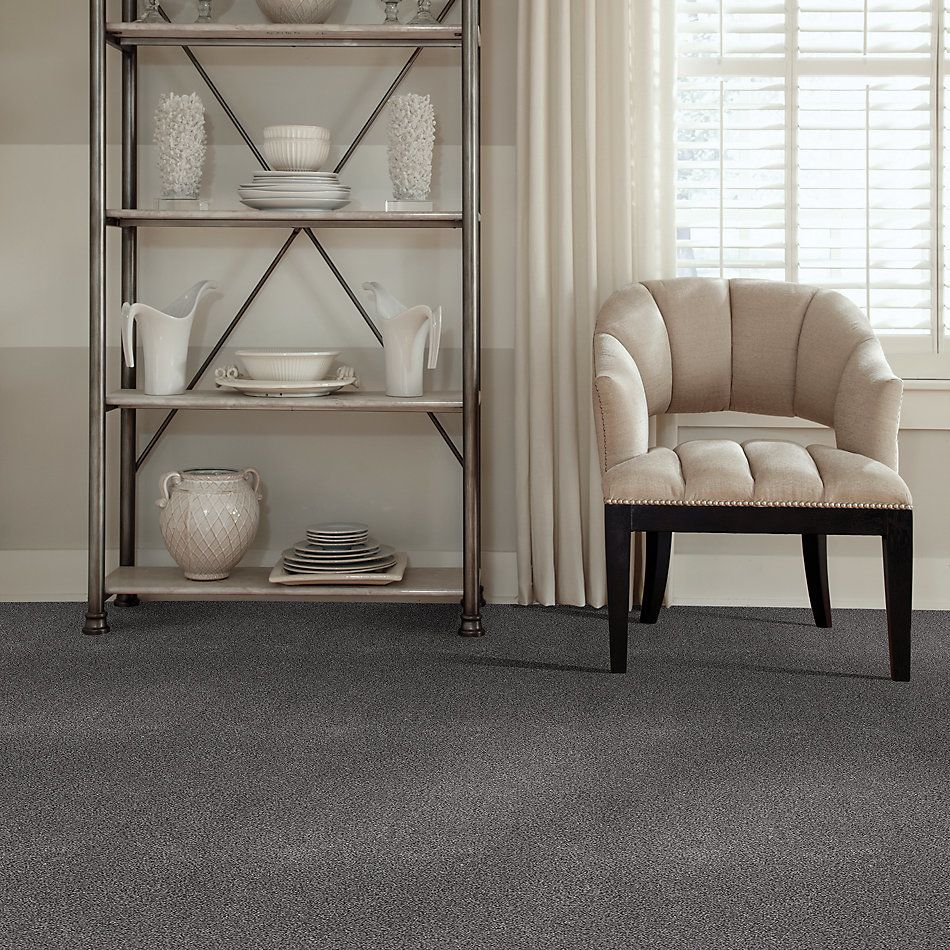 Shaw Floors Value Collections Calm Simplicity II Net Silver Lining 00510_5E356