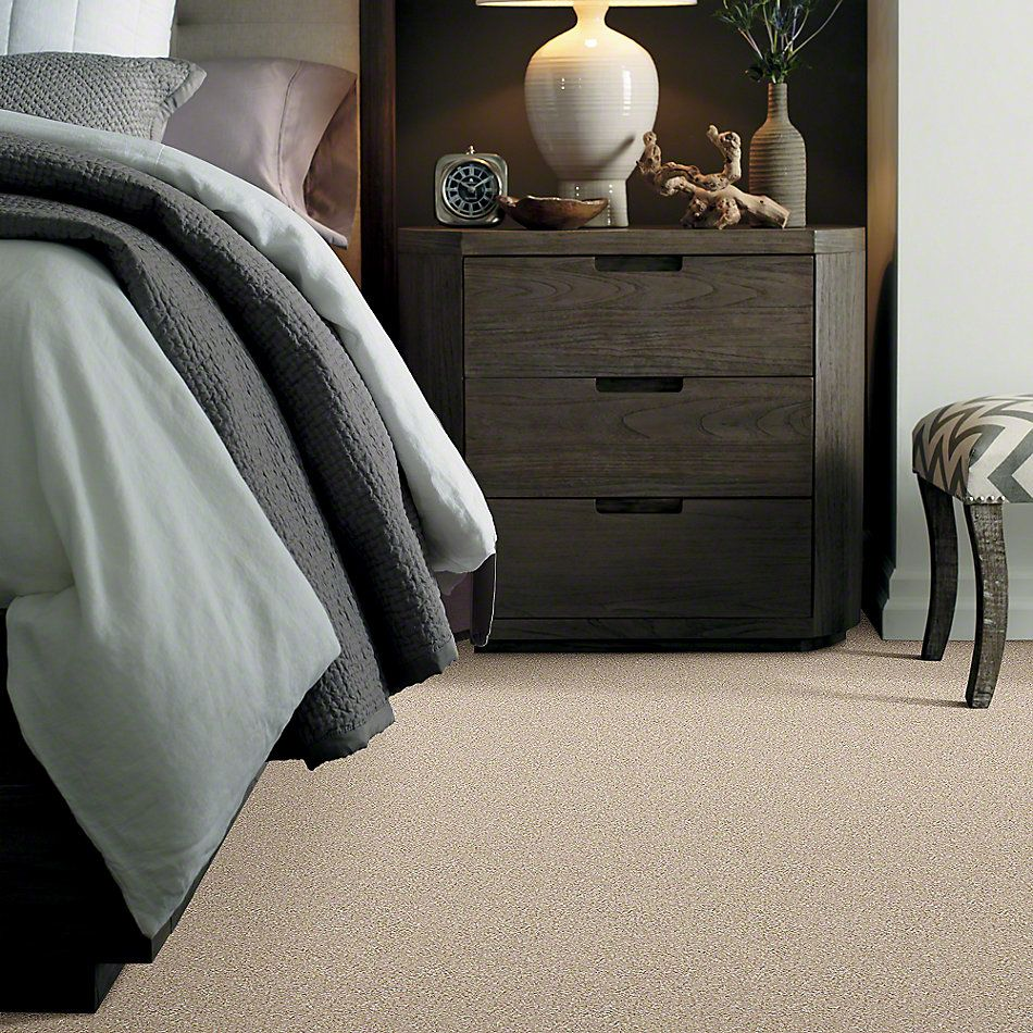 Shaw Floors Value Collections You Know It Net Frosted Ice 00510_E0927