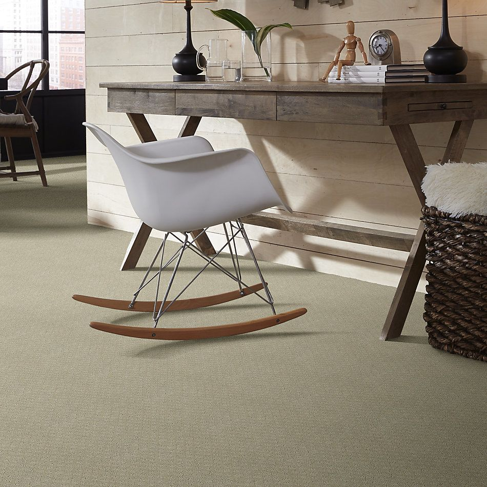 Shaw Floors Value Collections Pace Setter Net Cold Water 00510_E9137