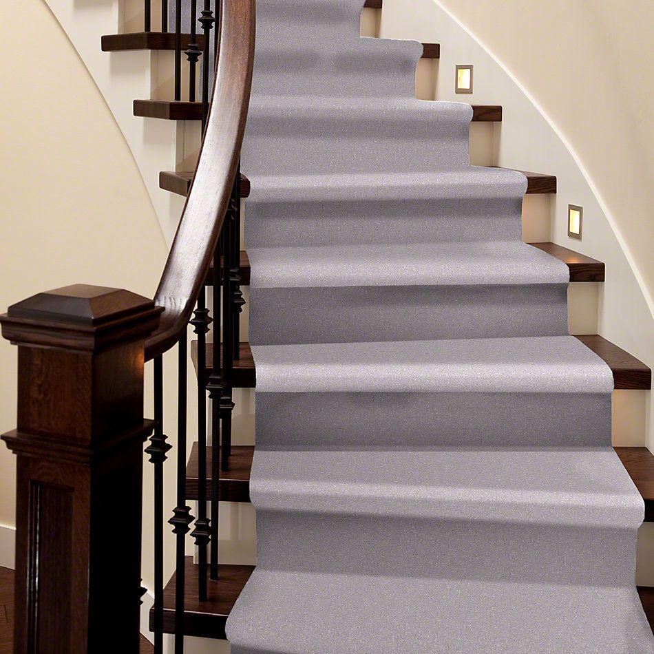 Shaw Floors Roll Special Xv425 Sparkle 00510_XV425