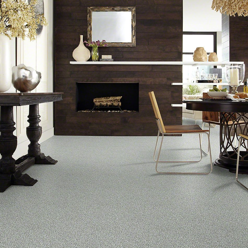 Shaw Floors Shaw Flooring Gallery In The Zone (s) Steel 00511_5525G