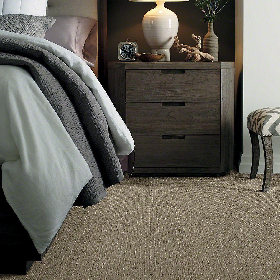 Shaw Floors Speed Of Light Gray Flannel 00511_E0528