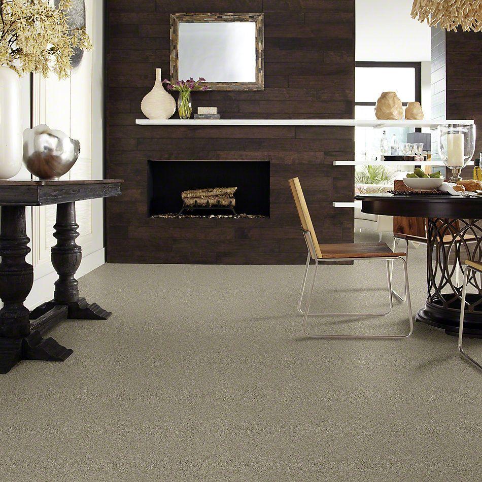 Shaw Floors Origins II Gray Flannel 00511_E9301