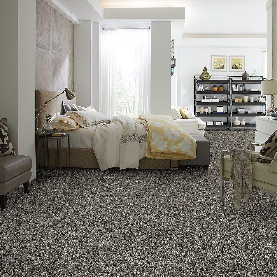 Shaw Floors You Got It II Granite Dust 00511_NA241