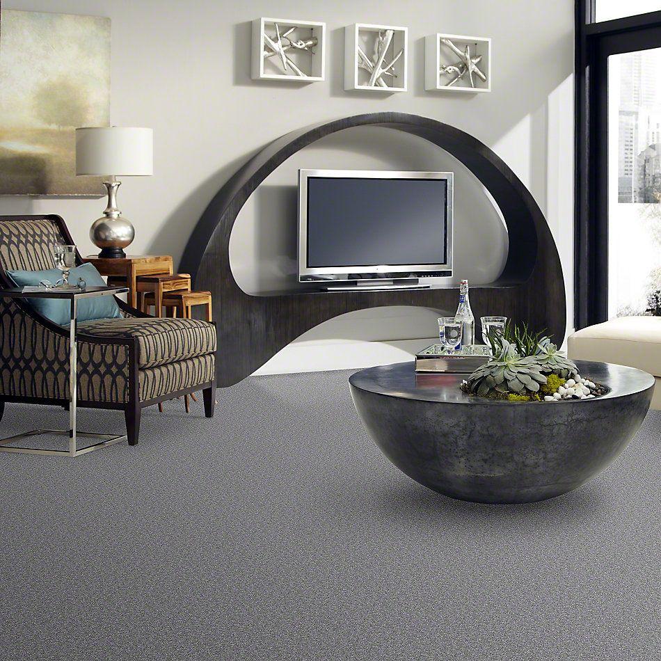 Shaw Floors Anso Premier Dealer Unique Style Aluminum 00511_Q2196