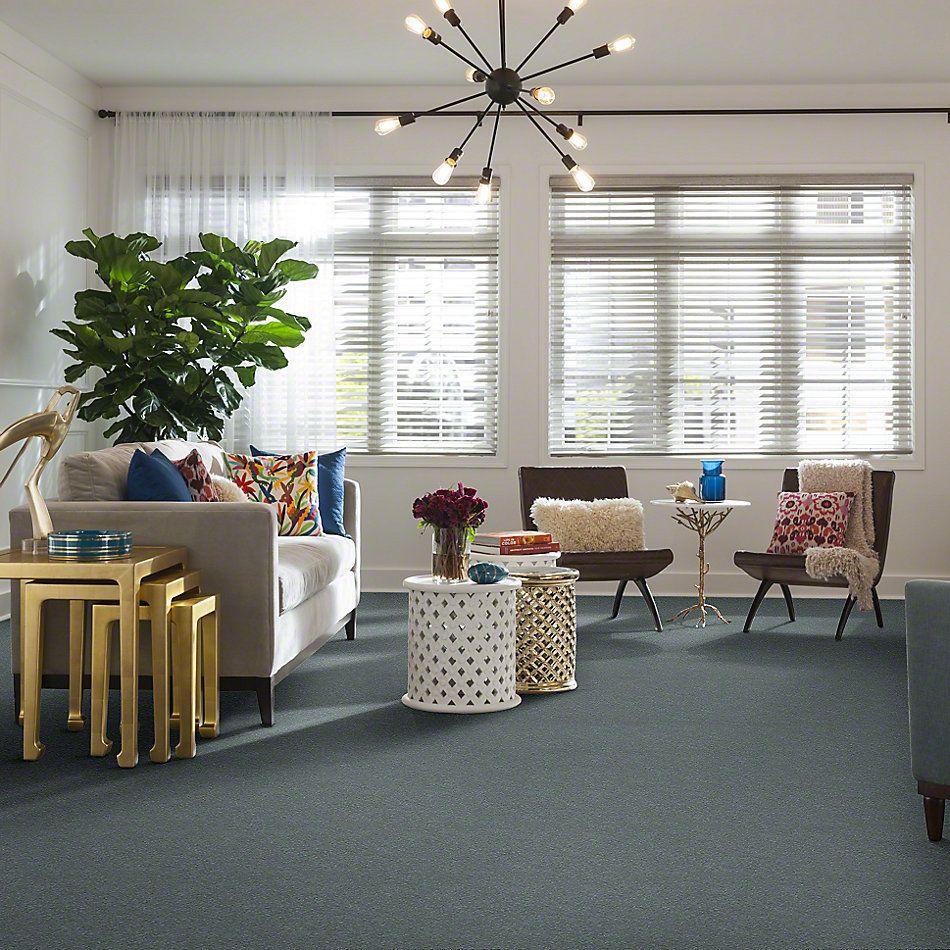 Shaw Floors Roll Special Xv425 Dolphin 00511_XV425