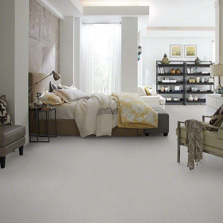 Shaw Floors Value Collections Pacific Trails Net Sea Salt 00512_E0826