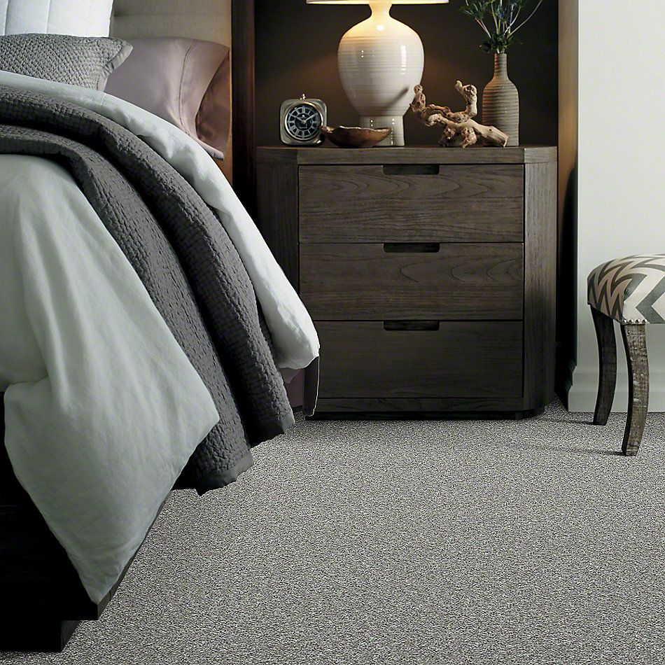 Shaw Floors Value Collections Explore With Me Twist Net Pewter 00512_E0849