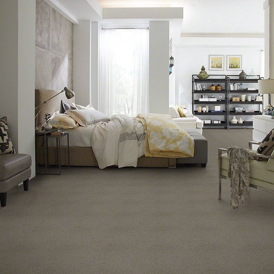 Shaw Floors Shaw Flooring Gallery Departure Pewter 00513_5510G