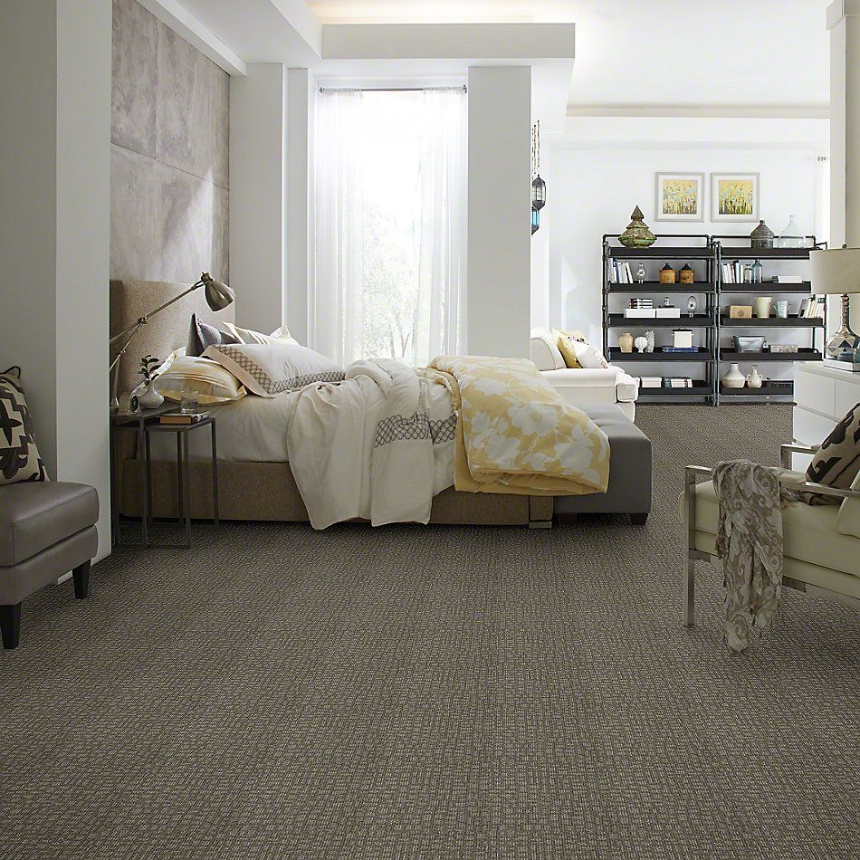 Shaw Floors Shaw Flooring Gallery Set The Stage Pewter 00513_5515G