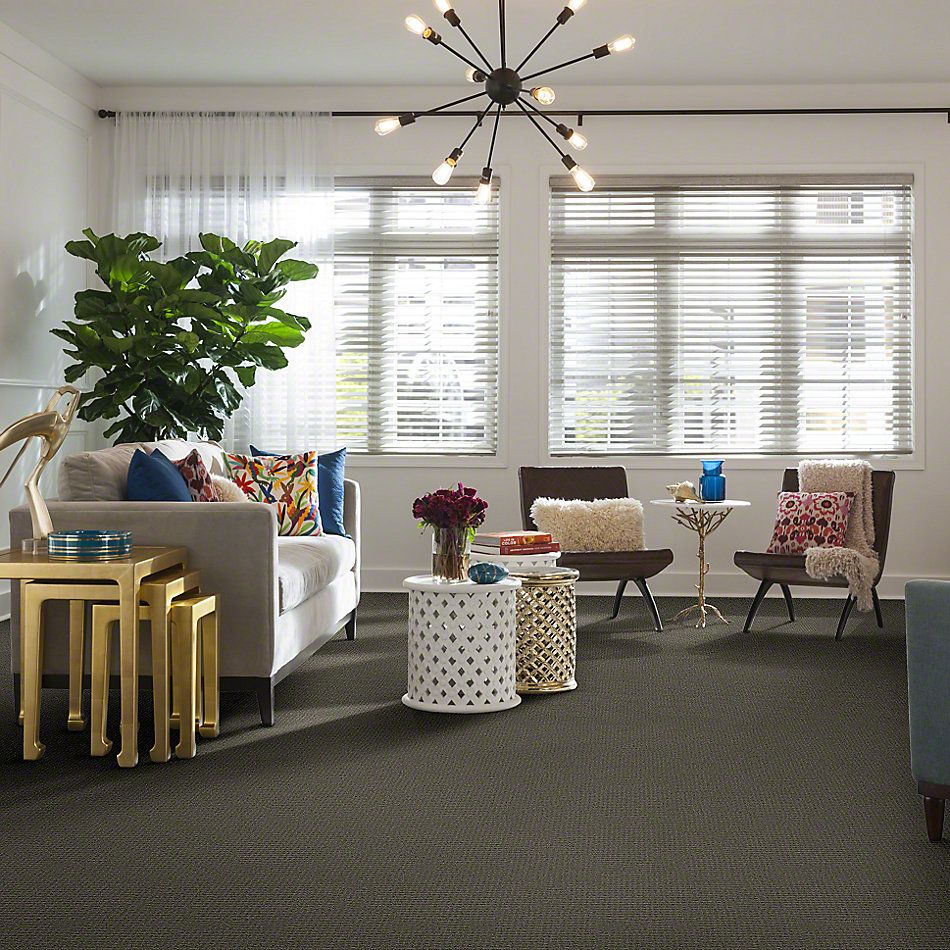 Shaw Floors Shaw Design Center Propel Pewter 00513_5C733