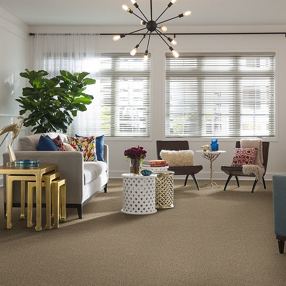 Anderson Tuftex American Home Fashions Nice Dreams I Oyster 00513_ZA814