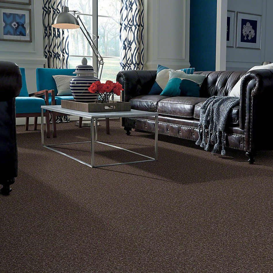 Shaw Floors Max Appeal Rocky Coast 00514_E0568