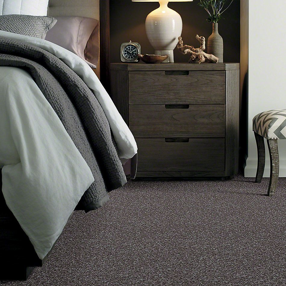 Shaw Floors Value Collections Explore With Me Twist Net Steel Wool 00514_E0849