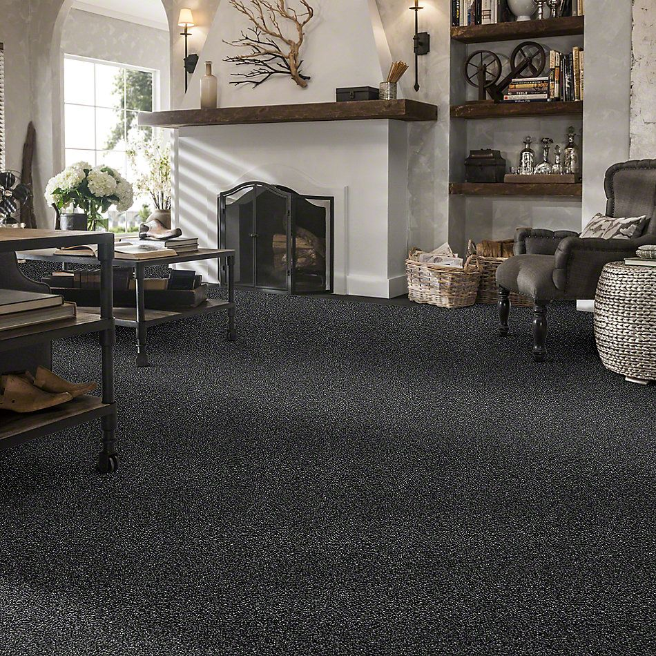 Shaw Floors Simply The Best Virtual Gloss Bison 00515_EA718
