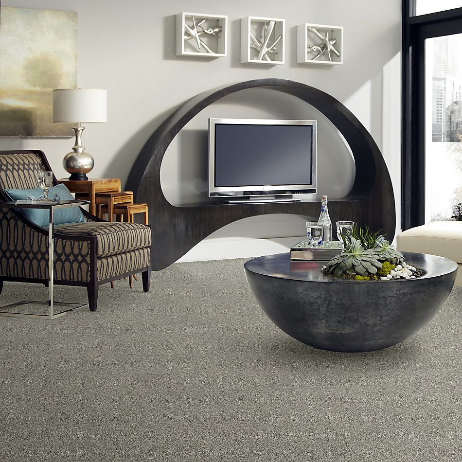 Shaw Floors Stay Toned Charcoal Biscotti 00520_6E002