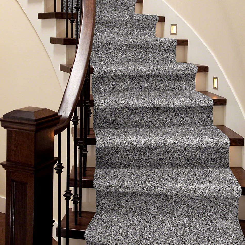 Shaw Floors Value Collections Travel With Me (t) Net Brushed Nickel 00520_E0903